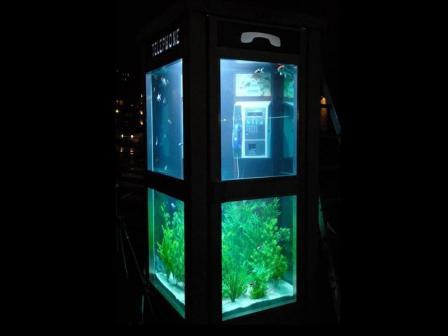 аквариум в Лионе