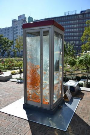 аквариум в Токио